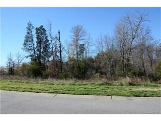 652 Briarwood Drive, Lake Wylie, SC - USA (photo 5)