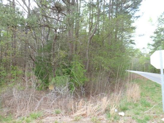 29.64 Acre Hwy 9, Lancaster, SC - USA (photo 5)