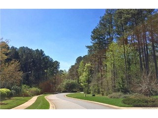 115 Brighton Lane, Salisbury, NC - USA (photo 4)