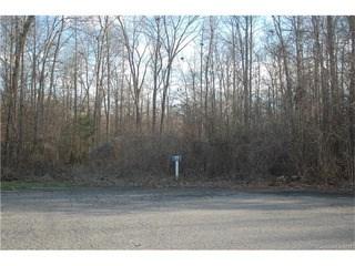 5226 Morning Dove Court, Gastonia, NC - USA (photo 3)