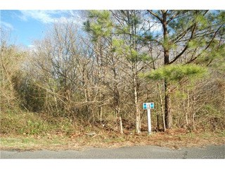 5309 Oaktree Drive, Gastonia, NC - USA (photo 3)