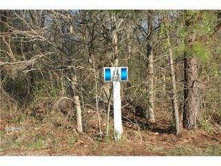 5309 Oaktree Drive, Gastonia, NC - USA (photo 4)