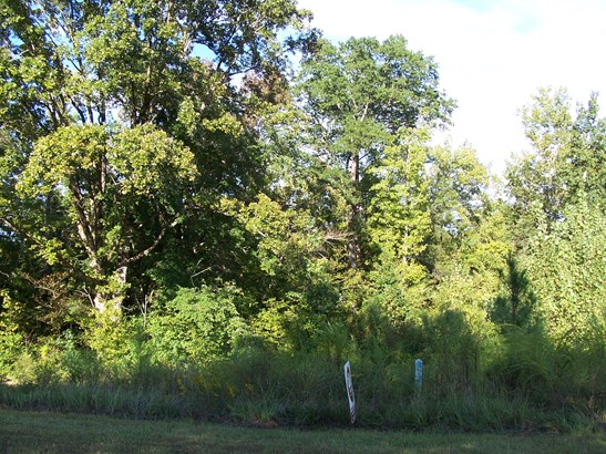 Lot B1a/b1 Carobrook Road, Fort Lawn, SC - USA (photo 2)