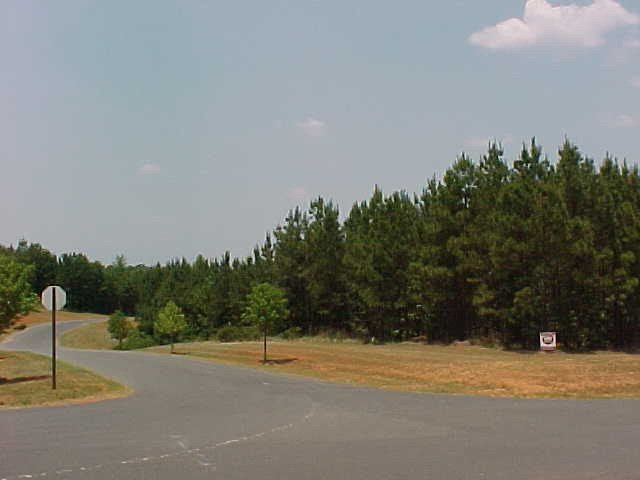 Lot 22 Tributary Drive, Fort Lawn, SC - USA (photo 5)