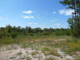 60.50 Acre Cannery Road, Lancaster, SC - USA (photo 2)