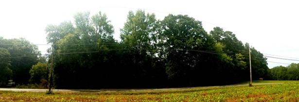 000 Liberty Hill Church Road, Oakboro, NC - USA (photo 2)