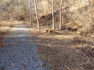 163 Whispering Pines Ln, Mooresboro, NC - USA (photo 4)