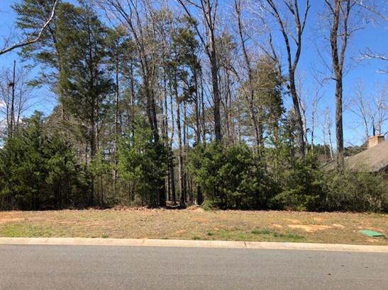 6036 Headlands Court, Belmont, NC - USA (photo 5)