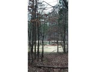 2365 Ferndale Court, Landis, NC - USA (photo 1)