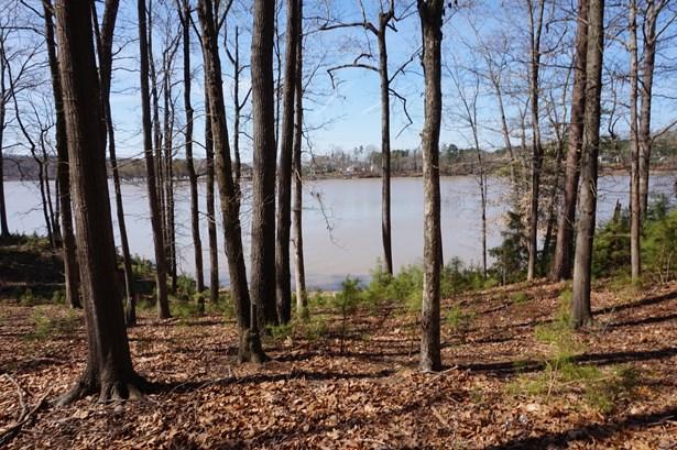 3253 Ashwood Park, Belmont, NC - USA (photo 3)