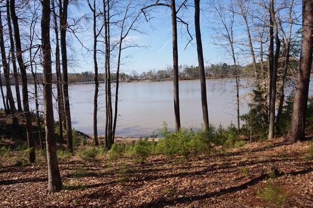 3253 Ashwood Park, Belmont, NC - USA (photo 4)