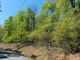 0 Valleyview Dr, Bostic, NC - USA (photo 1)
