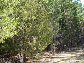 Lot 31 Plainview Road, Monroe, NC - USA (photo 2)