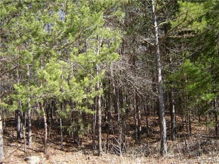 Lot 31 Plainview Road, Monroe, NC - USA (photo 3)