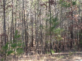 Lot 31 Plainview Road, Monroe, NC - USA (photo 5)