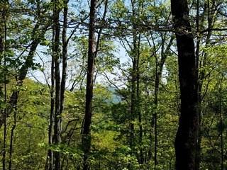 0 Upper Ridge Rd, Bostic, NC - USA (photo 5)