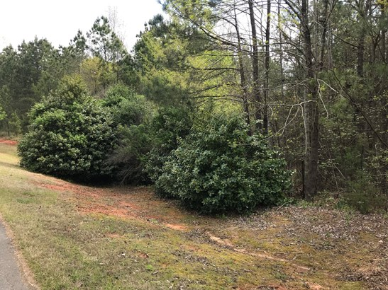00 Tributary Drive, Fort Lawn, SC - USA (photo 3)