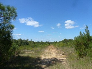 0 Cannery Road, Lancaster, SC - USA (photo 3)