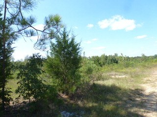 0 Cannery Road, Lancaster, SC - USA (photo 4)