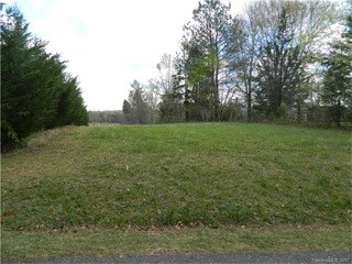 12.39 Acre Green Pond Road, Indian Land, SC - USA (photo 1)