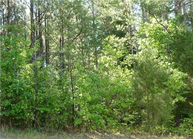 1124 Seminole Drive, Indian Land, SC - USA (photo 4)