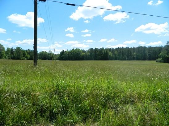 Lot 3 Green Pond Road, Indian Land, SC - USA (photo 3)