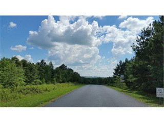 133 Wood Cove Lane, Stony Point, NC - USA (photo 3)