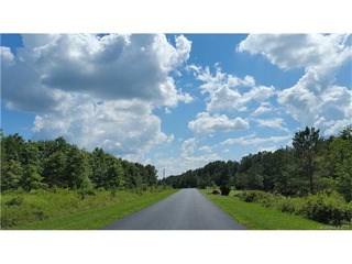 133 Wood Cove Lane, Stony Point, NC - USA (photo 4)