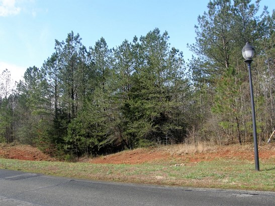 5111 Stockbridge Drive, Mount Holly, NC - USA (photo 5)