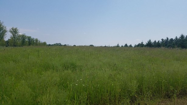 Vacant Land - Seymour, WI