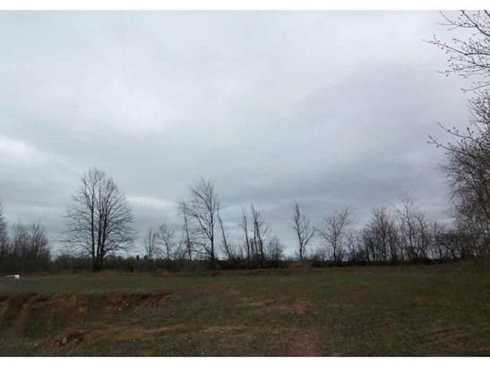 Vacant Land - PESHTIGO, WI (photo 2)