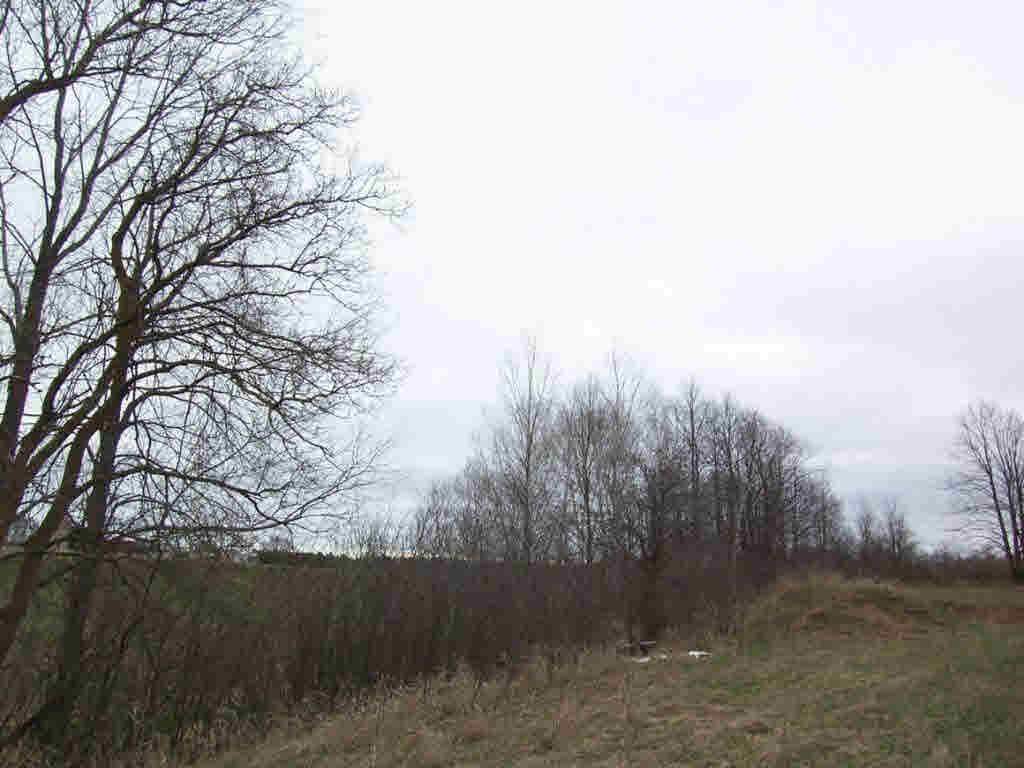 Vacant Land - PESHTIGO, WI (photo 3)