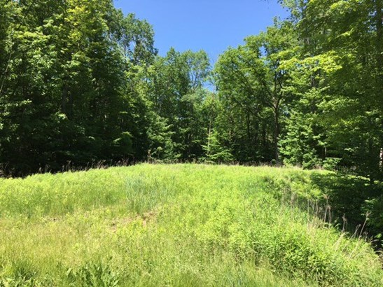 Vacant Land - LITTLE SUAMICO, WI (photo 1)