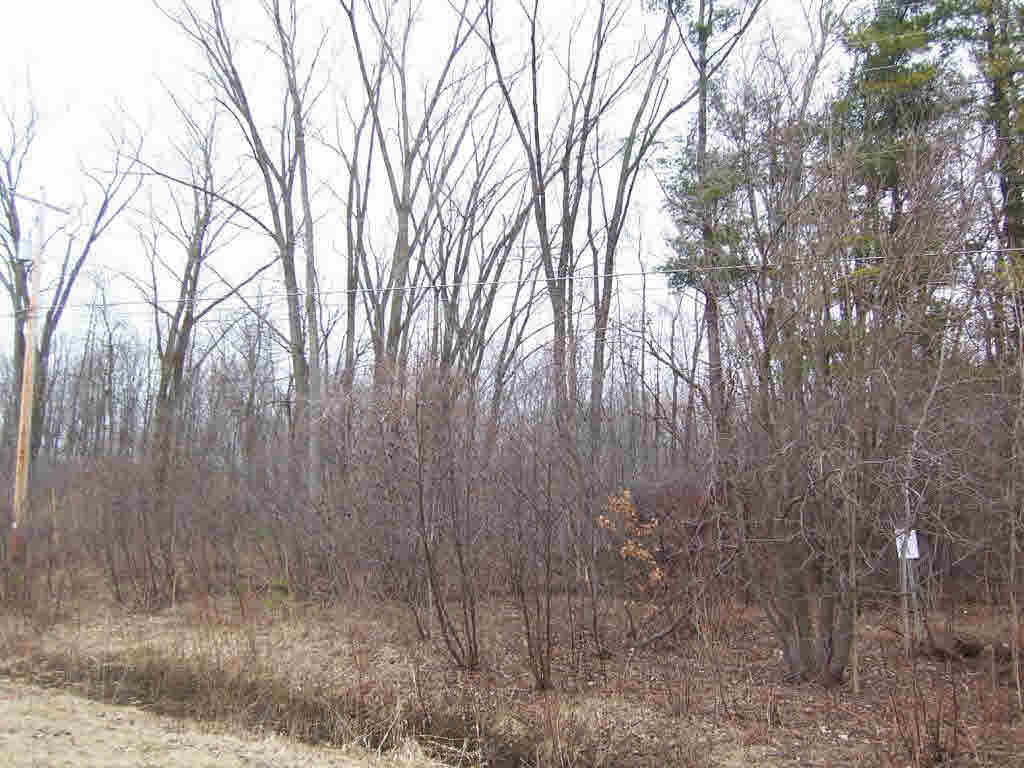 Vacant Land - Suamico, WI (photo 5)