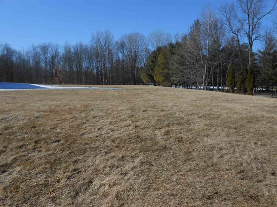 Vacant Land - SUAMICO, WI (photo 4)