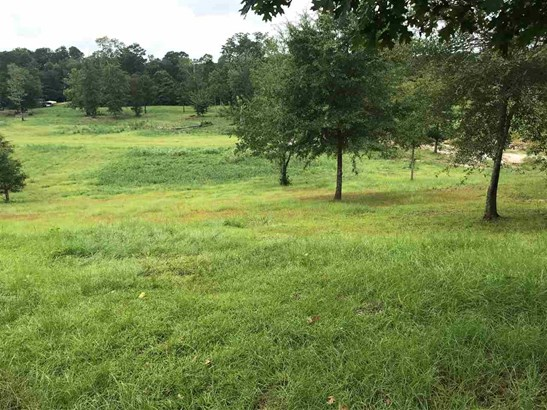 Farms/Ranches - Raleigh, MS