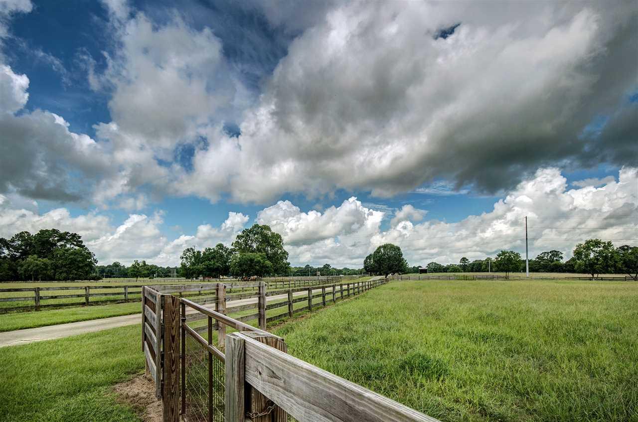 Farmhouse, Detached - Terry, MS (photo 4)