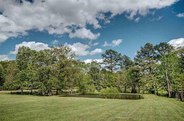 Ranch, Detached - Brandon, MS (photo 4)