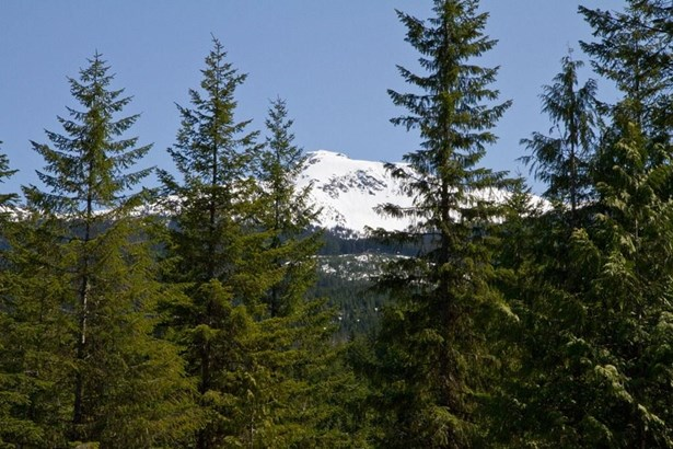 #lot 1-1600 Southlands Lane Lot 1, Whistler, BC - CAN (photo 4)