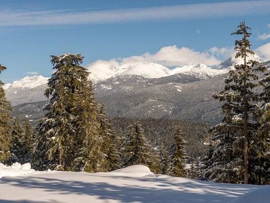 5436 Stonebridge Drive, Whistler, BC - CAN (photo 2)