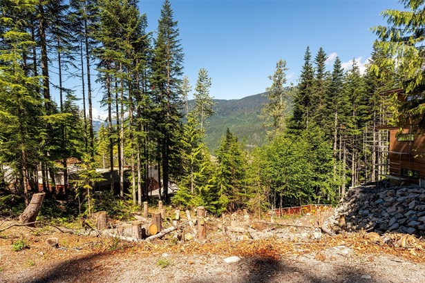 2905 Kadenwood Drive, Whistler, BC - CAN (photo 5)