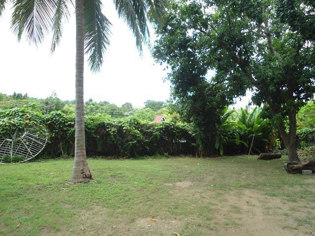 Lot 1 Coconut Grove - Ocho Rios Bypass Road, Ocho Rios - JAM (photo 4)