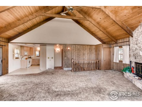 Residential-Detached, 2 Story - Jamestown, CO (photo 4)