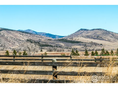 1 Story/Ranch, Farm and Ranch - Longmont, CO (photo 5)