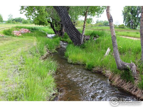 Vacant Land/Lots - Hygiene, CO (photo 4)