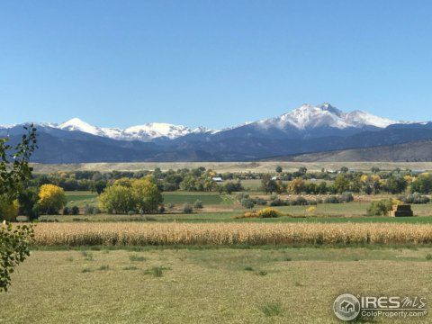 Residential-Detached, 1 Story/Ranch - Longmont, CO (photo 2)