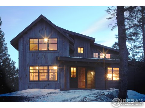 Residential-Detached, 2 Story - Allenspark, CO (photo 1)