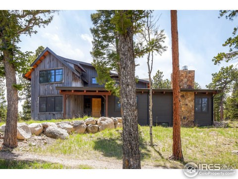 Residential-Detached, 2 Story - Allenspark, CO (photo 2)