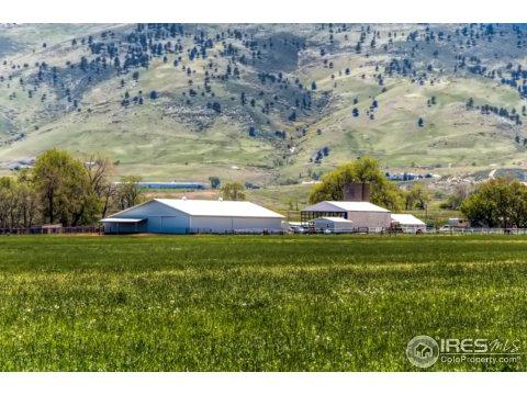 Farm and Ranch - Longmont, CO (photo 2)