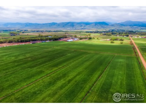 Farm and Ranch - Longmont, CO (photo 4)